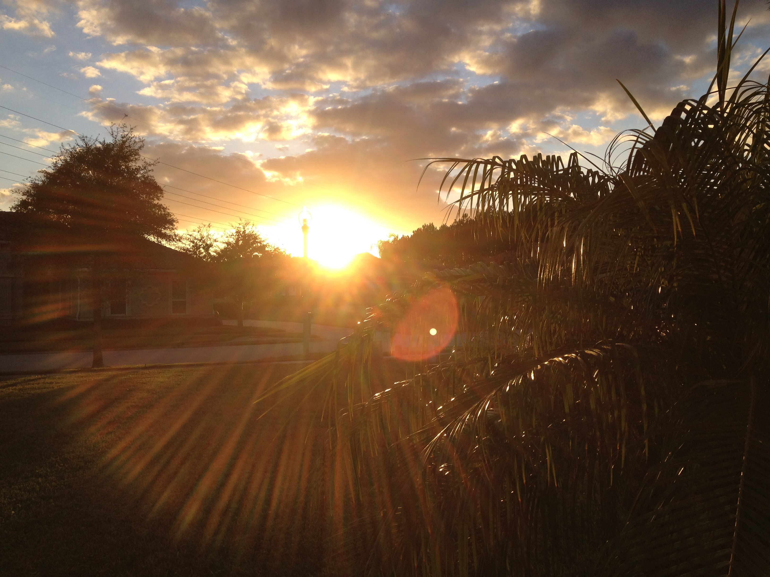 Sunset for Healing Power of Sunshine 2