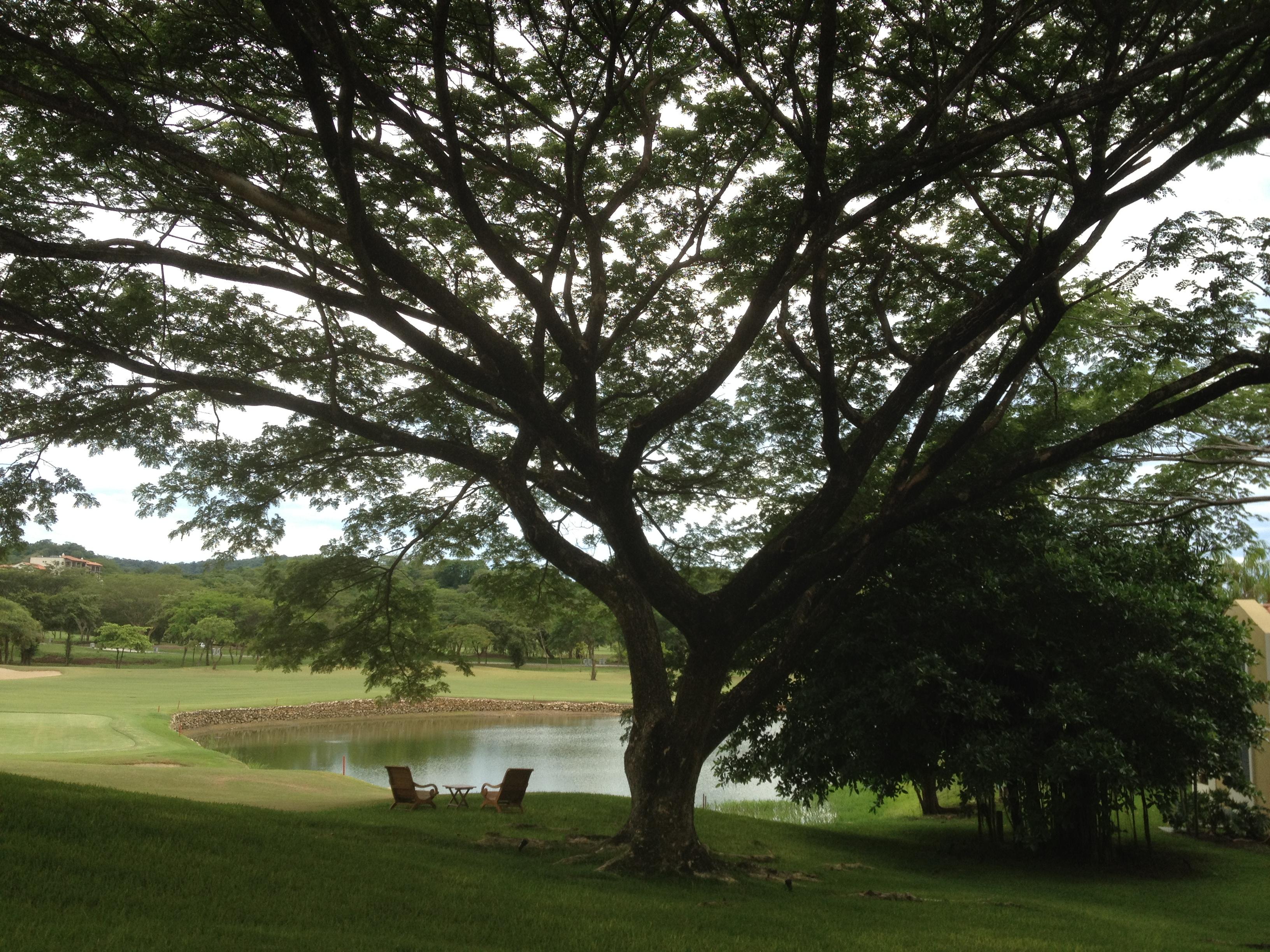 Costa Rican feeling guanacaste2