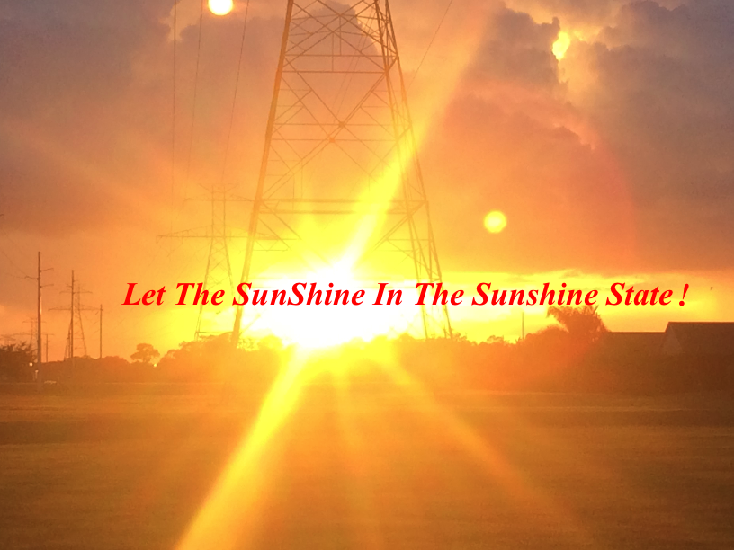 """Let The SunShine In The Sunshine State!"" (credit:sunisthefuture-Susan Sun Nunamaker)"