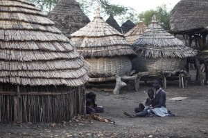 A village in South Sudan (creative commons attribution-Steve Evans)