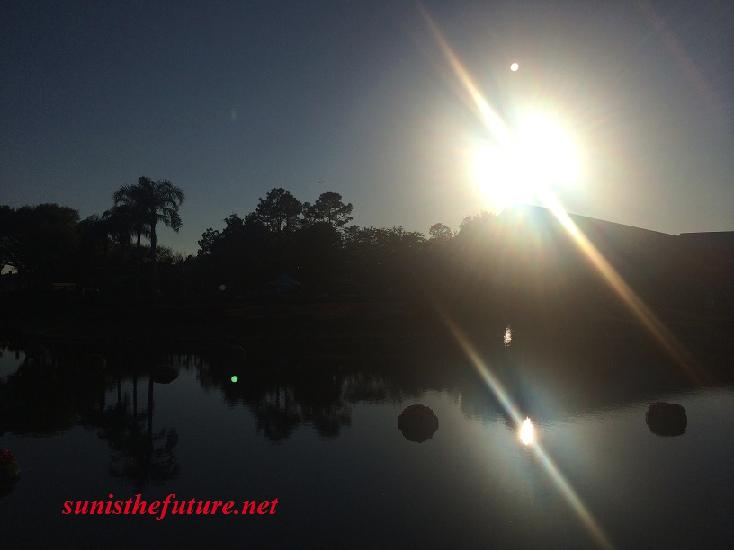 Harmonious Sunshine (photographed by sunisthefuture-Susan Sun Nunamaker)