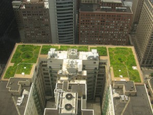 Green Roof of Chicago City Hall ( attribution: Tony The Tiger)