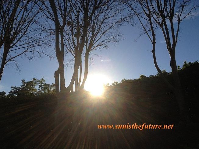 Sunisthefuture-FL Sun Source of Life final