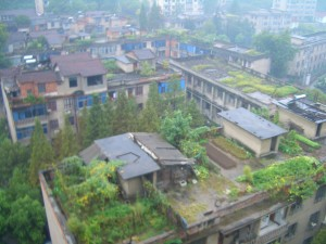 Green roof of Tongyang downtown apartment complex (attribution: Vmenkov)